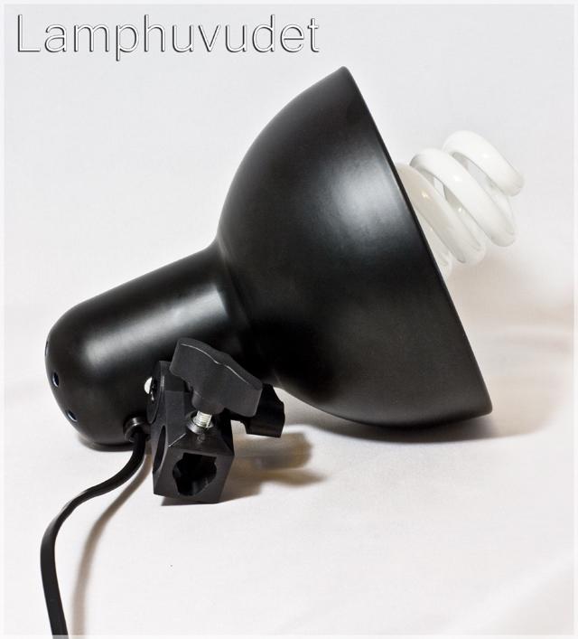 Lamphuvud